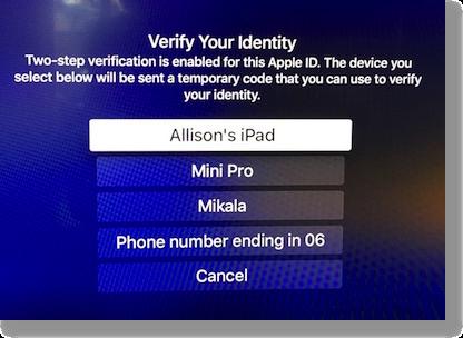 Atv verify identity