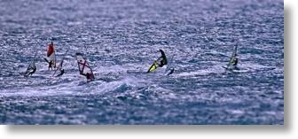 Miniature windsurfers