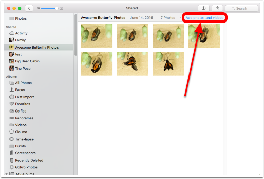 ICloud Photo Sharing To Non-Apple Users