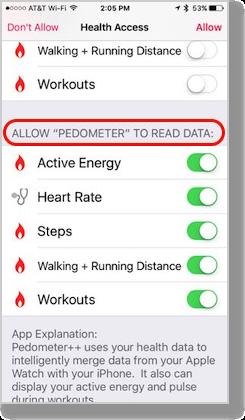 Health access pedometer