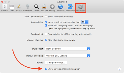 Safari Preferences Advanced Develop Menu
