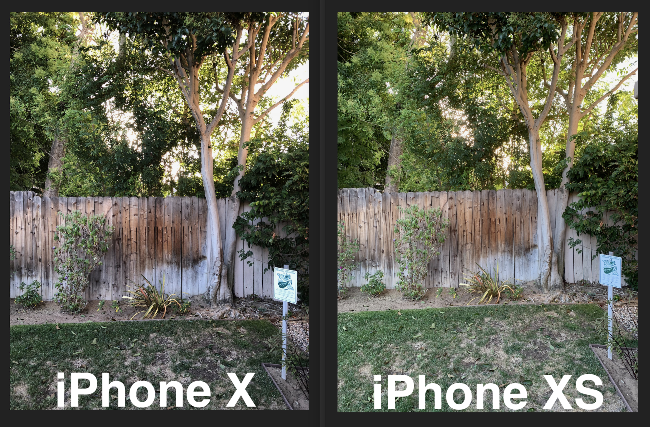 IPhone X vs XS HDR fence trees grass 2600 72