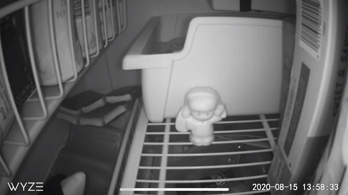 Wyze Cam Outdoor Infrared View