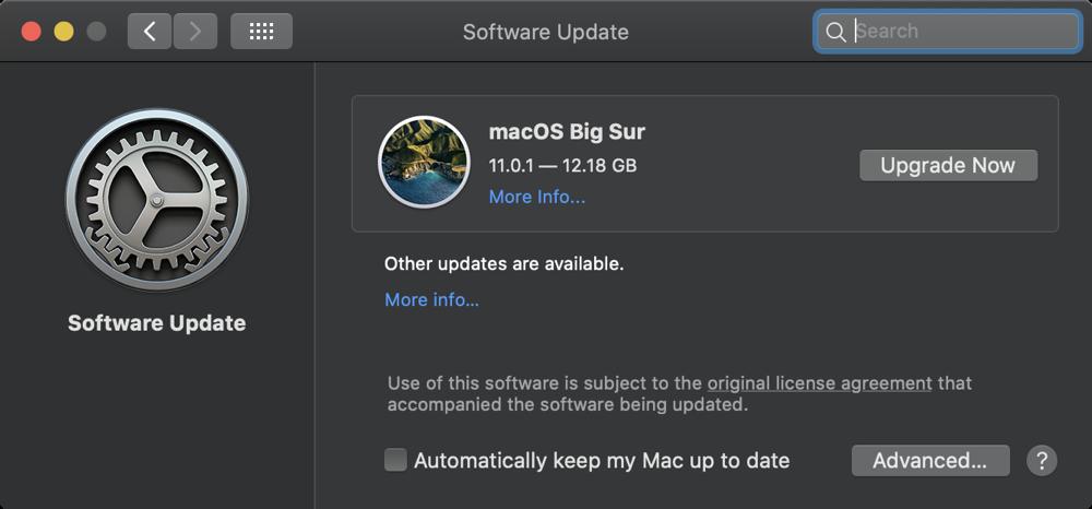 01 Software Update macOS Big Sur
