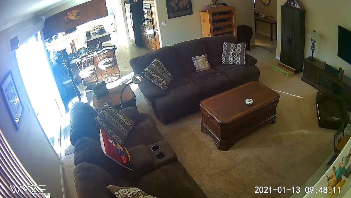 Wyzecam View of Family room