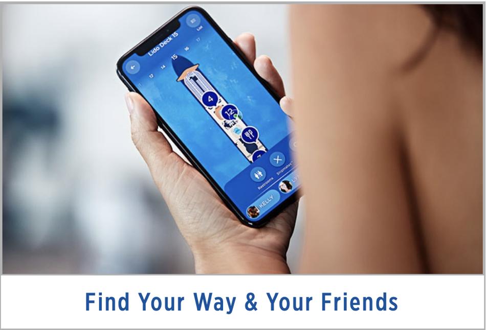 MedallionClass Find Friends