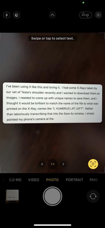 Live Text Captured
